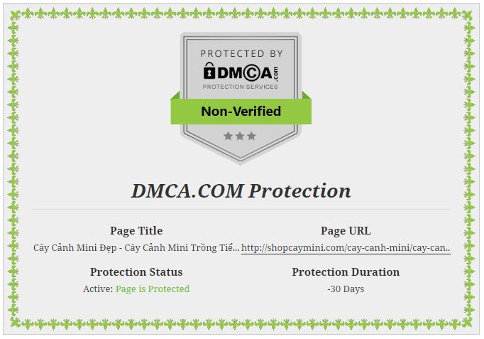 DMCA-shop-cay-canh-mini Cây Cảnh Mini